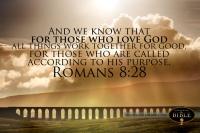 Romans 828