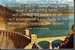 Isaiah43_19
